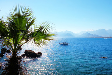 Mediterranean seascape image with palm tree and sailing boat over sunny blue sky