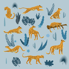 Set of leopards in various poses, plants, flowers, exotic, graphic cute trend style, mammal predator, jungle