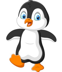 Cute penguin cartoon on white background
