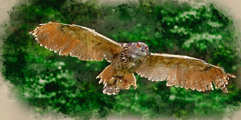 Wall Mural - Watercolour painting of Stunning European eagle owl in flight
