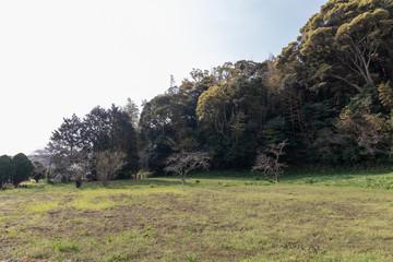 名護屋城の山里丸