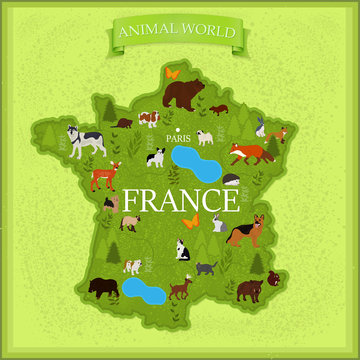 Map of France with animals and plants on a light yellow background