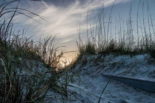 Sand dune at Butler Beach, St Augustine