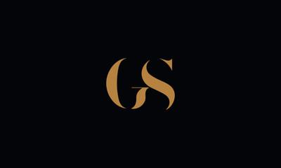 GS logo design template vector illustration minimal design Wall mural