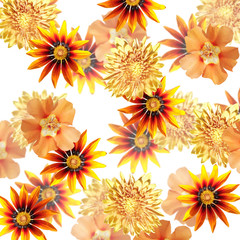 Fototapete - Beautiful floral background of orange flowers. Isolated
