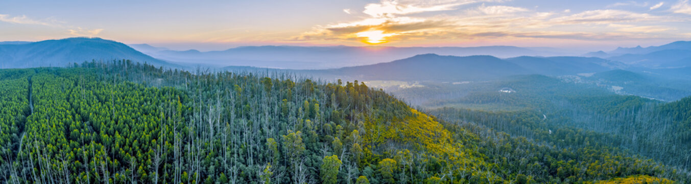Sunset over mountains and forest in Yarra Ranges National Park - aerial panoramic landscape