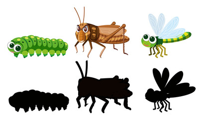 Set of insect character