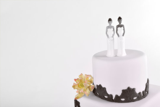 Wedding cake interracial lesbian couple cake-toppers