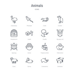 set of 16 animals concept vector line icons such as smilodon, coelodonta, bunny, cows, hibernation, trapeze artists, caviar, app bug. 64x64 thin stroke icons