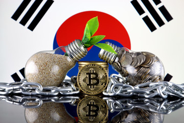Bitcoin (BTC), green renewable energy concept, and South Korea Flag. Electricity prices, energy saving in the cryptocurrency mining business.