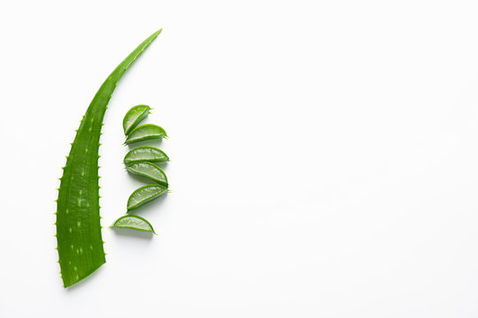 Aloe vera leaf and slices on white background, space for text. Natural treatment