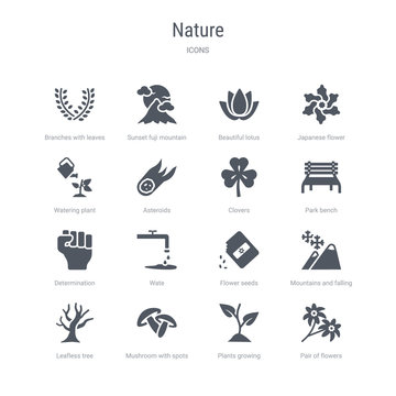 set of 16 vector icons such as pair of flowers, plants growing, mushroom with spots, leafless tree, mountains and falling snowflakes, flower seeds, wate, determination from nature concept. can be