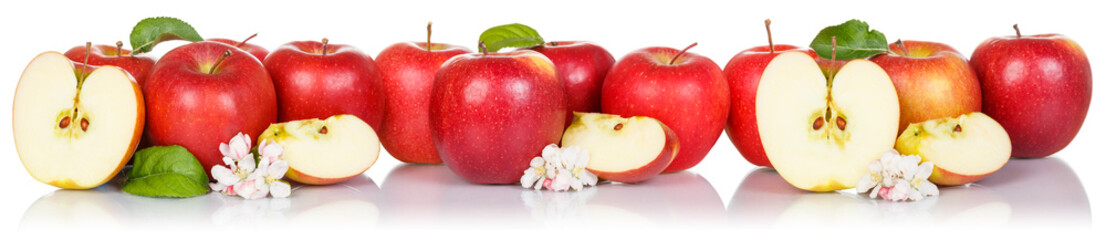 Red apple fruits apples fruit isolated on white in a row Wall mural