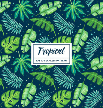 Tropical seamless pattern with exotic palm leaves on dark background. Perfect for wallpapers, pattern fills, web page backgrounds, surface and fabric textures...