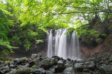 栃木県 那須塩原市 乙女の滝