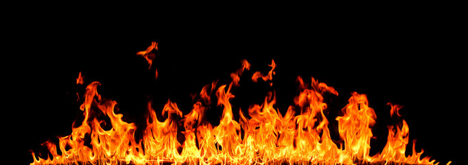 Fire flames on black background Wall mural