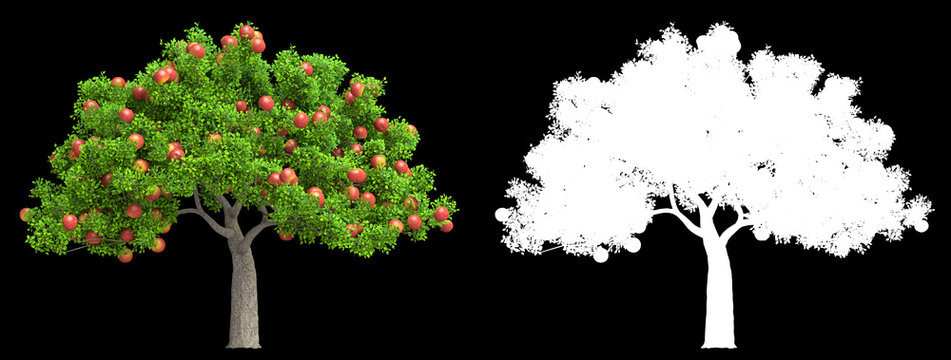 a red apple tree isolated 3D illustration
