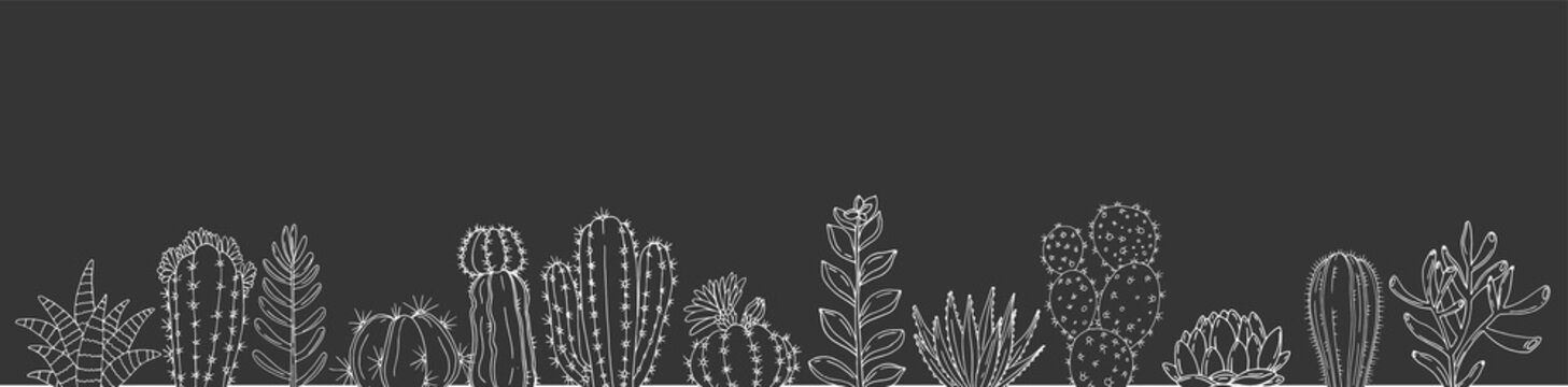 Poster with seamless ornament hand drawn cacti and succulents on a chalkboard background