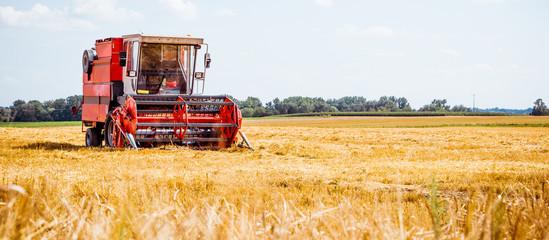 Fotoväggar - Mähdrescher erntet reifen Weizen. Landwirtschaft