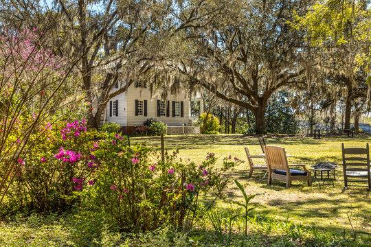 Southern idyllic backyard in Georgia