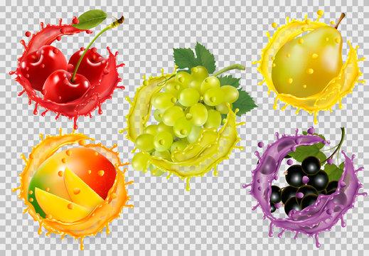 Set of fruit in juice splash on transparent background. Cherry, pear, mango, grapes, blackberry. Vector