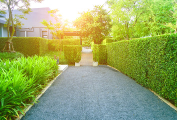 Asphalt road in the garden of the house entrance, The home side street in a green lawn, Front yard for a backdrop. Wall mural