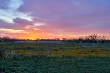Panoramic view of sunrise over rural desert landscape. Horizontal shot.