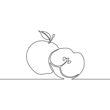 Continuous one line appe and slice of apple, vector