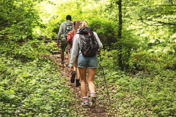 Group of friends hiking together in nature.They walking on old path.Rear view.