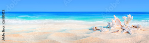 Wall mural seashells on seashore - beach holiday background..
