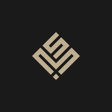 MS Logo Design Template
