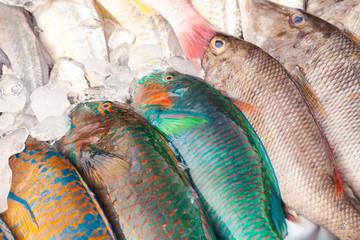 Colorful fresh fish assortment, market