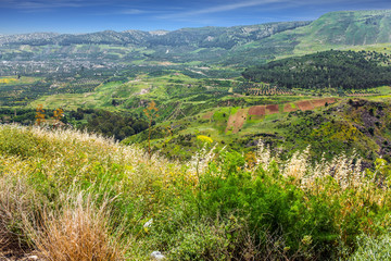 Spring blooming Golan Heights