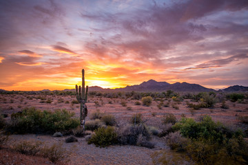 Buetiful Sunset in the Desert, Quartzsite Arizona