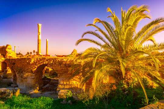 View with ancient remains of Carthage and landscape. Tunis, Tunisia.