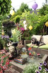 Hund Sommer Garten Mischling Blumen