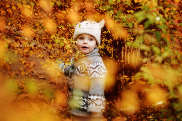toddler boy in  fall forest