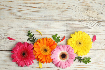 Poster Gerbera Flat lay composition with beautiful bright gerbera flowers on wooden background. Space for text