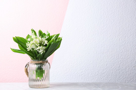 Beautiful lily of the valley bouquet in vase on table near color wall, space for text