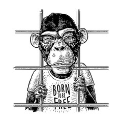Arrested Monkey dressed t-shirt. Born to be free handwriting lettering.
