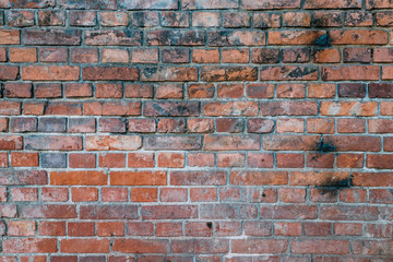 Wall of dirty red brick texture wallpaper