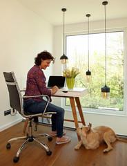 Homeoffice Schreibtisch Computer Fenster Frau Hund