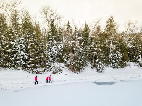 Family on winter vacation hikes together on path between snowy pine trees on frozen lakeshore