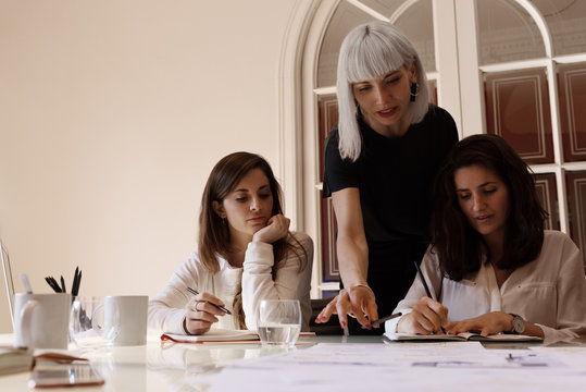 Elegant women coworking in office