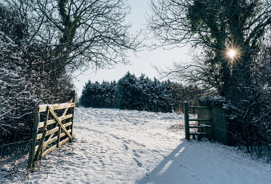 Open gate and snow covered field at sunrise. Shirwell, Devon, UK.