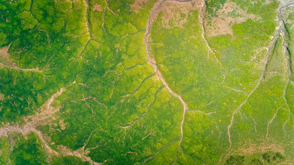 Aerial view of a marshes