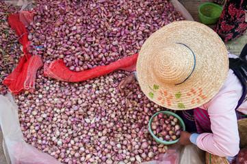 Garlic seller in a local market,  Myanmar