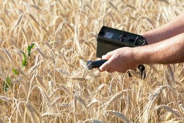 Measuring radiation level of wheat