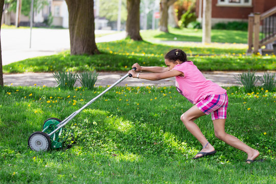 Young girl in pink pushing a push lawn mover with the use of some effort as she mows the lawn.