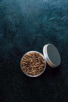 Overhead view of mealworms in container